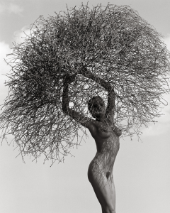 Herb Ritts - Neith With Tumbleweed, Paradise Cove 1986